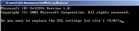 Microsoft SelfSSL Version 1.0, Do you want to replace the SSL settings for site 1 (Y/N)?