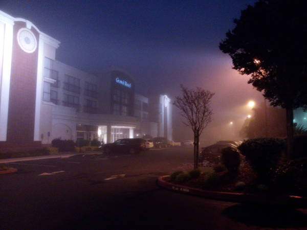 foggy morning in Sunnyvale, CA