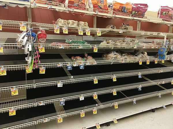 Giant Foods, 2020-03-15, bread shelf